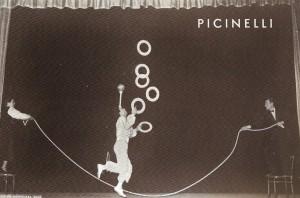 Picinelli