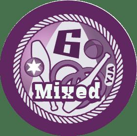 6-mixed-props-yja-badge